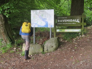 Exploring our new local patch at Ravensdale